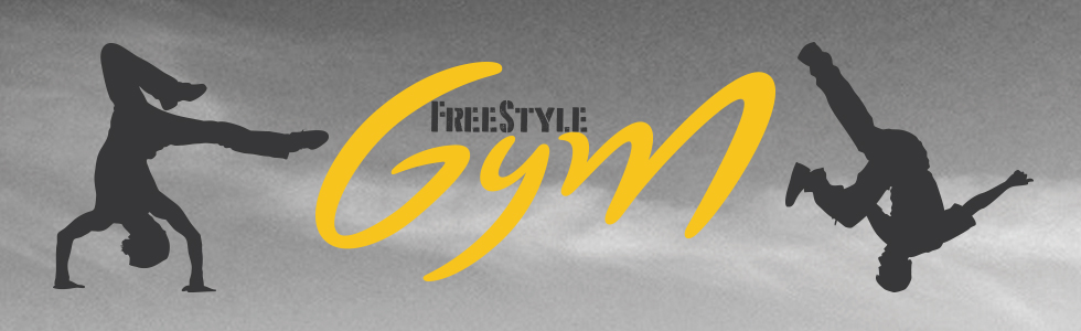 1504690534 1464344244 mea freestyle gym