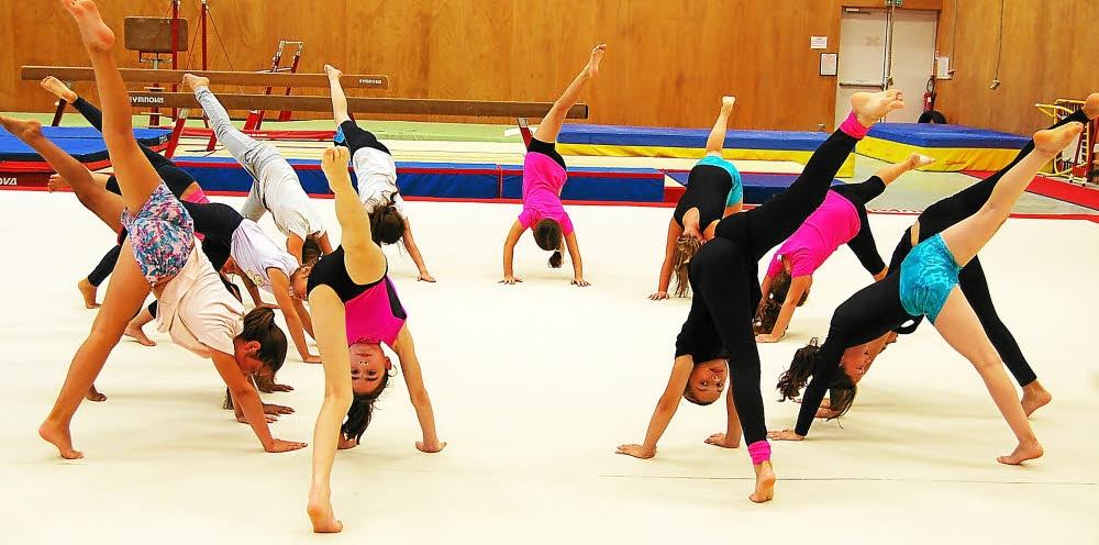 Gymnastique artistique l asal fait le plein 3105172